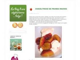 Le blog d 39 une v g tarienne belge ses recettes - Blog cuisine bio vegetarienne ...