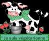 Blog de L'assiette végétarienne