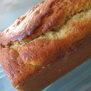 rapide Cake au citron et au pavot préparer la recette