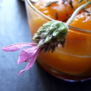 facile à cuisiner Compote d'abricots,gingembre et fleur de lavande préparation