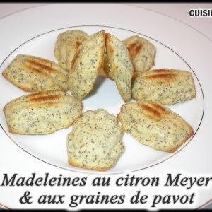 rapide à cuisiner Madeleines au citron Meyer et aux graines de Pavot cuisiner la recette