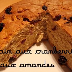 facile Pain aux cranberries et aux amandes préparation
