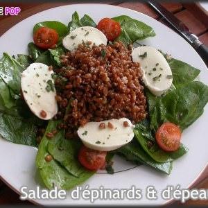 facile Salade de pousses d'épinards & d'épeautre aux graines préparer la recette
