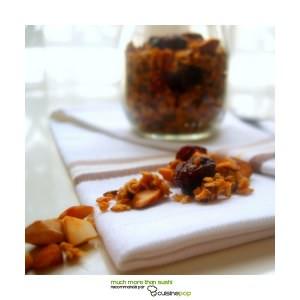 simple à préparer Granola aux cranberries recette