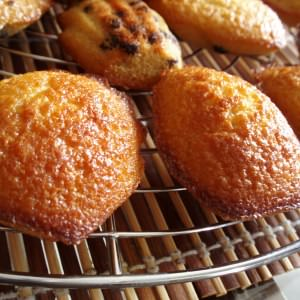 facile Madeleines recette