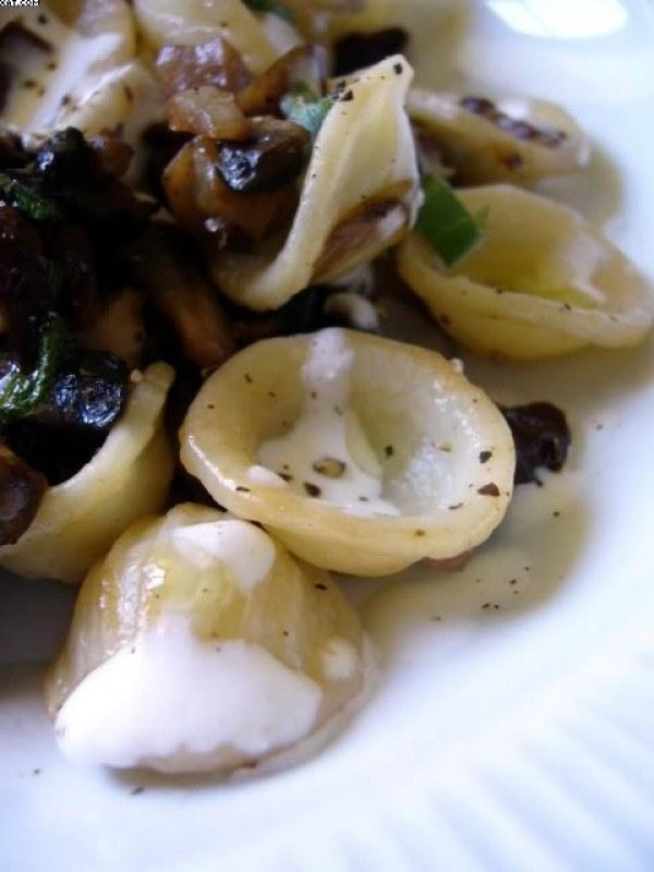 Orecchiette aux tomates séchées, champignons et sauge, crème de chèvre