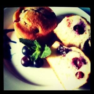 muffins aux fruits sans gluten sans caséine